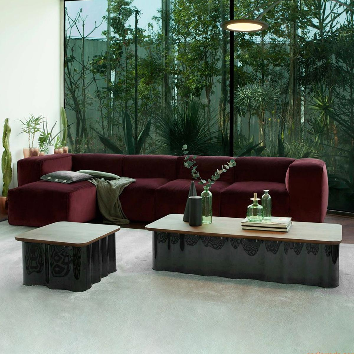 Drape Curved Glaas And Wood Table